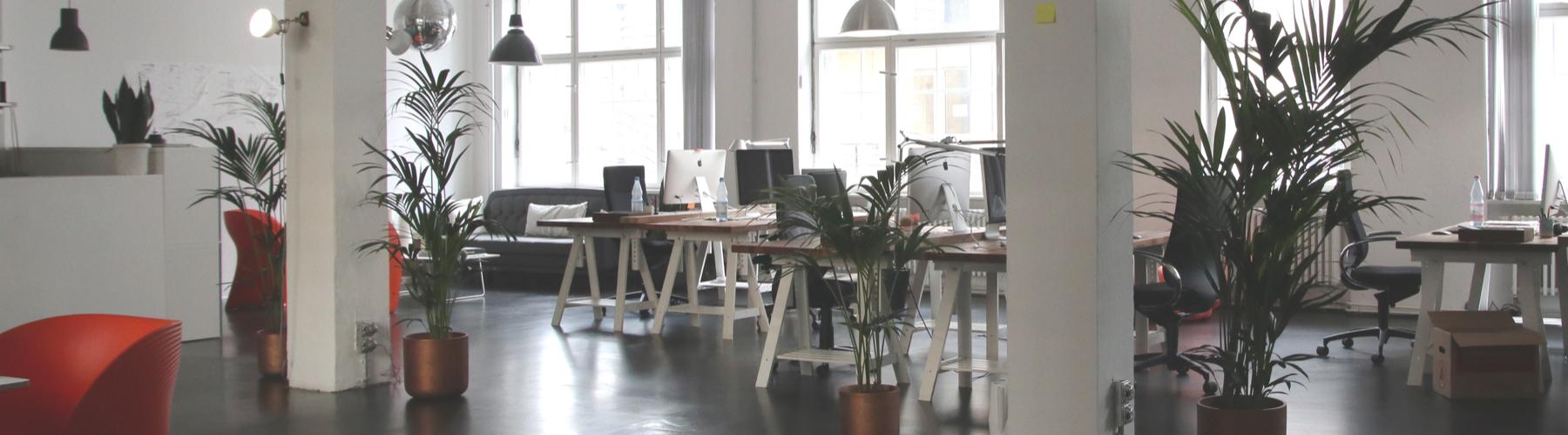 La décoration de bureaux pour améliorer le bonheur au travail