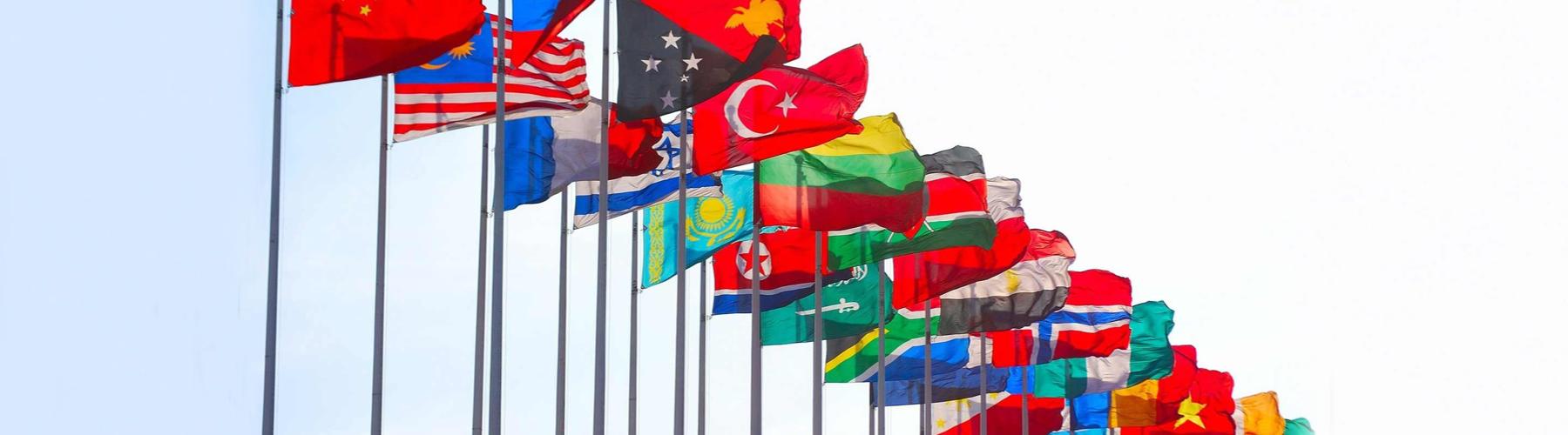 Quels pays ont les drapeaux les plus fous ?